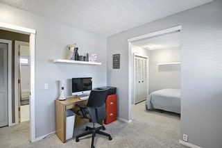 Photo 6: 2735 41A Avenue SE in Calgary: Dover Detached for sale : MLS®# A1082554