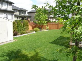 Photo 6: 12473 201ST STREET in MCIVOR MEADOWS: Home for sale
