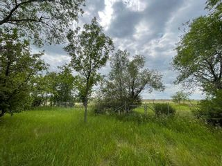Photo 3: 646 Pipeline Road in Winnipeg: Amber Trails Residential for sale (4F)  : MLS®# 202117127