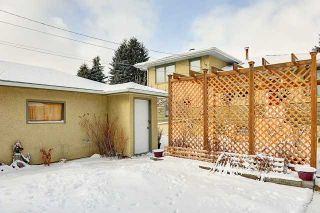 Photo 20: 3220 CAROL Drive NW in CALGARY: Collingwood Residential Detached Single Family for sale (Calgary)  : MLS®# C3605684
