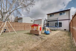 Photo 31: 704 43 Street SE in Calgary: Forest Heights Semi Detached for sale : MLS®# A1096355