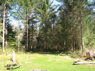 Photo 4: 896 Sayward Rd in SAYWARD: NI Kelsey Bay/Sayward House for sale (North Island)  : MLS®# 838020