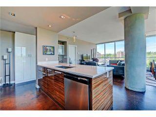 Photo 15: 505 235 9A Street NW in Calgary: Sunnyside Condo for sale : MLS®# C4077475