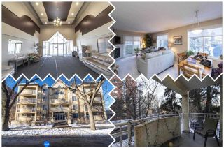 Photo 1: 208 10208 120 Street in Edmonton: Zone 12 Condo for sale : MLS®# E4232510