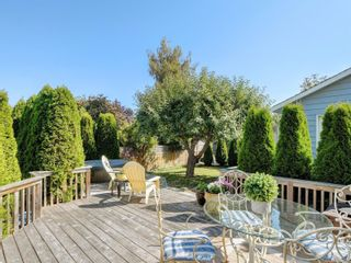Photo 37: 147 Cambridge St in : Vi Fairfield West House for sale (Victoria)  : MLS®# 885266