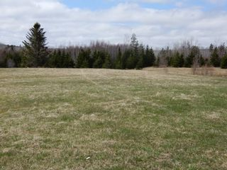 Photo 29: 32 Sutherlands Lane in Scotsburn: 108-Rural Pictou County Farm for sale (Northern Region)  : MLS®# 202108950