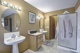Photo 25: 18388 Chaparral Street SE in Calgary: Chaparral Detached for sale : MLS®# A1113295