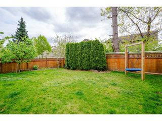 """Photo 38: 20528 68 Avenue in Langley: Willoughby Heights House for sale in """"TANGLEWOOD"""" : MLS®# R2569820"""