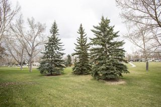 Photo 39: 260 Lynnview Way SE in Calgary: Ogden Detached for sale : MLS®# A1102665