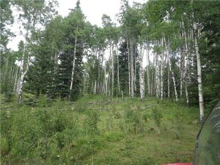 Photo 11: 2 miles west of Dartique Hall in COCHRANE: Rural Rocky View MD Rural Land for sale : MLS®# C3545361