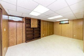Photo 20:  in Edmonton: Zone 22 House for sale : MLS®# E4248753
