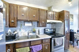 Photo 13: 217 Templemont Drive NE in Calgary: Temple Semi Detached for sale : MLS®# A1120693