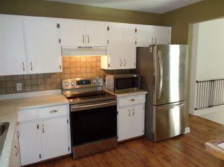 Photo 10: 21044 RIVERVIEW Drive in Hope: Hope Kawkawa Lake House for sale : MLS®# R2474466