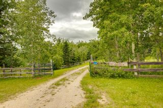 Photo 12: 6148 Township Road 314: Rural Mountain View County Detached for sale : MLS®# A1009425