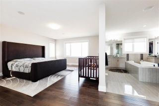 Photo 19: 723 ALBANY PL NW: Edmonton House for sale : MLS®# E4088726