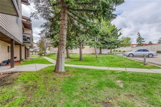 Photo 21: 37 3745 FONDA Way SE in Calgary: Forest Heights Row/Townhouse for sale : MLS®# C4302629