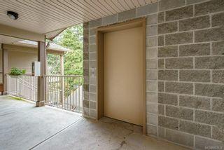 Photo 11: 303 1860 Comox Ave in : CV Comox (Town of) Condo for sale (Comox Valley)  : MLS®# 863534