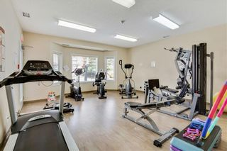 Photo 24: 1216 SIENNA PARK Green SW in Calgary: Signal Hill Apartment for sale : MLS®# C4237628