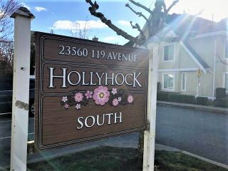 "Photo 2: 43 23560 119 Avenue in Maple Ridge: Cottonwood MR Townhouse for sale in ""HOLLYHOCK SOUTH"" : MLS®# R2556792"