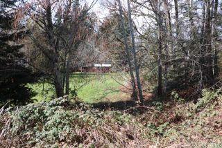 Photo 7: Lot 1 Tomswood Rd in : PA Alberni Valley Land for sale (Port Alberni)  : MLS®# 871069