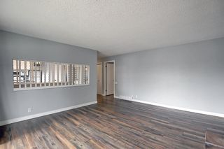 Photo 6: 155 Templevale Road NE in Calgary: Temple Detached for sale : MLS®# A1119165