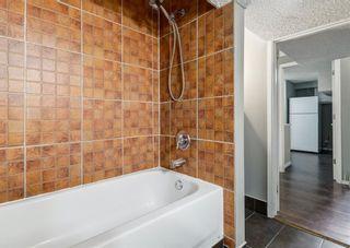 Photo 44: 11235 27 Street SW in Calgary: Cedarbrae Detached for sale : MLS®# A1114953