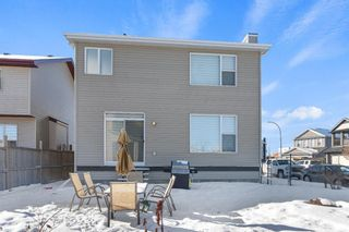 Photo 34: 101 COPPERSTONE Close SE in Calgary: Copperfield Detached for sale : MLS®# A1076956
