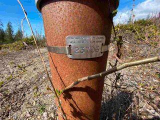 Photo 6: 1815 HARMAN Road: Roberts Creek Land for sale (Sunshine Coast)  : MLS®# R2614266