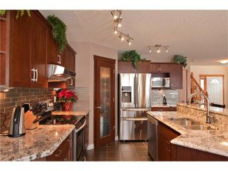 Photo 9: 48 COUGARSTONE Court SW in Calgary: Cougar Ridge House for sale : MLS®# C4045394