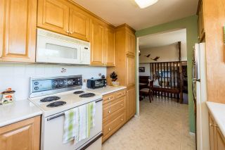 Photo 9: 1680 SPRINGER Avenue in Burnaby: Parkcrest House for sale (Burnaby North)  : MLS®# R2374075