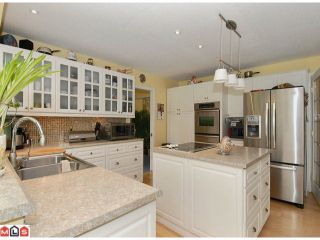Photo 4: 17178 26A Avenue in Surrey: Grandview Surrey House for sale (South Surrey White Rock)  : MLS®# F1111437