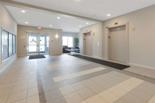 Photo 23: 330 1818 RUTHERFORD Road in Edmonton: Zone 55 Condo for sale : MLS®# E4229639