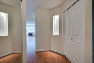 Photo 15: 120 17459 98A Avenue in Edmonton: Zone 20 Condo for sale : MLS®# E4248915