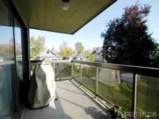 Photo 17: 208 2757 Quadra St in VICTORIA: Vi Hillside Condo for sale (Victoria)  : MLS®# 517322