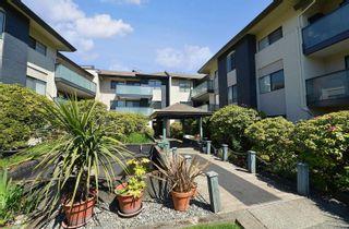Photo 21: 308 3900 Shelbourne St in Saanich: SE Cedar Hill Condo for sale (Saanich East)  : MLS®# 874690
