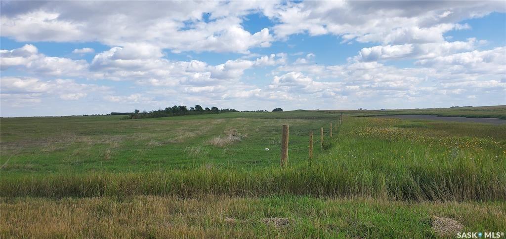 Main Photo: Tako Land in Tramping Lake: Lot/Land for sale (Tramping Lake Rm No. 380)  : MLS®# SK868447