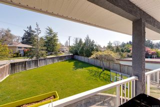 Photo 31: 3859 Epsom Dr in : SE Cedar Hill House for sale (Saanich East)  : MLS®# 872534