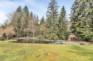 """Photo 9: 12954 MILL Street in Maple Ridge: Silver Valley House for sale in """"SILVER VALLEY/FERN CRESCENT"""" : MLS®# R2553509"""