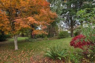 Photo 16: 720 Applegate Rd in : CR Willow Point House for sale (Campbell River)  : MLS®# 859549