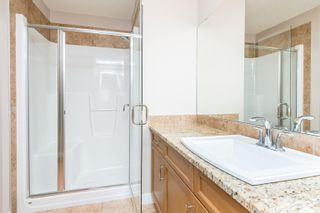 Photo 27: 224 CAMPBELL Point: Sherwood Park House for sale : MLS®# E4264225