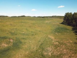 Photo 11: 31127 Township Road  262 Road in Rural Rocky View County: Rural Rocky View MD Detached for sale : MLS®# A1042056