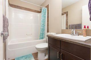 Photo 21: 17118 120 Street in Edmonton: Zone 27 House Half Duplex for sale : MLS®# E4242628