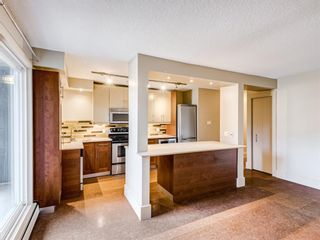Photo 6: 202 1603 26 Avenue SW in Calgary: South Calgary Apartment for sale : MLS®# A1100163