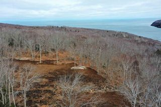 Photo 8: Lot Lighthouse Road in Bay View: 401-Digby County Vacant Land for sale (Annapolis Valley)  : MLS®# 202106334