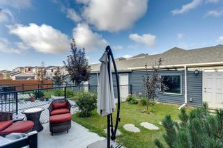 Photo 42: 919 Nolan Hill Boulevard NW in Calgary: Nolan Hill Row/Townhouse for sale : MLS®# A1141802