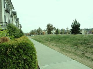 """Photo 22: 7348 192A Street in """"KNOLL"""": Home for sale"""
