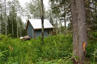 """Photo 18: 18865 GRANTHAM Road in Smithers: Smithers - Rural House for sale in """"Grantham"""" (Smithers And Area (Zone 54))  : MLS®# R2389601"""