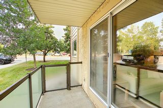 Photo 27: 3102 393 Patterson Hill SW in Calgary: Patterson Apartment for sale : MLS®# A1136424
