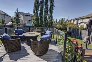 Photo 35: 17 Cranberry Lane SE in Calgary: Cranston Detached for sale : MLS®# A1142868