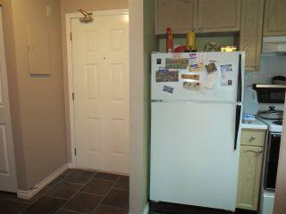 Photo 5: 317 98 LAVAL Street in Coquitlam: Maillardville Condo for sale : MLS®# R2117700